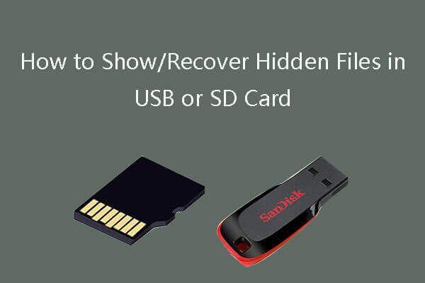 Kako prikazati / oporaviti skrivene datoteke na USB ili SD kartici [MiniTool Savjeti]