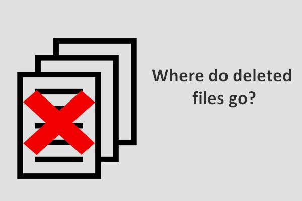 ¿Dónde van los archivos eliminados? Problema resuelto [Sugerencias de MiniTool]
