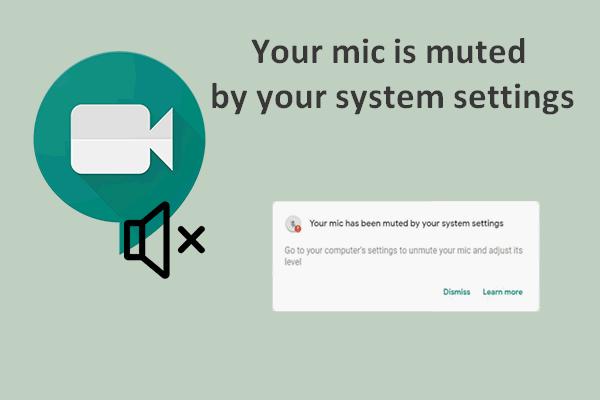 Lahendatud: teie mikrofon summutatakse teie süsteemi seadete abil Google Meet [MiniTool News]