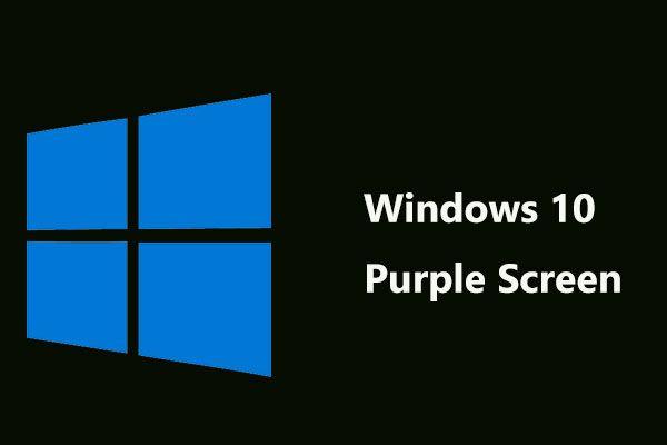 Желите ли добити љубичасти екран на рачунару? Ево 4 решења! [МиниТоол вести]