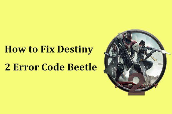 ¿Obtener el código de error Beetle de Destiny 2? Consulte una guía para saber cómo solucionarlo. [Noticias de MiniTool]