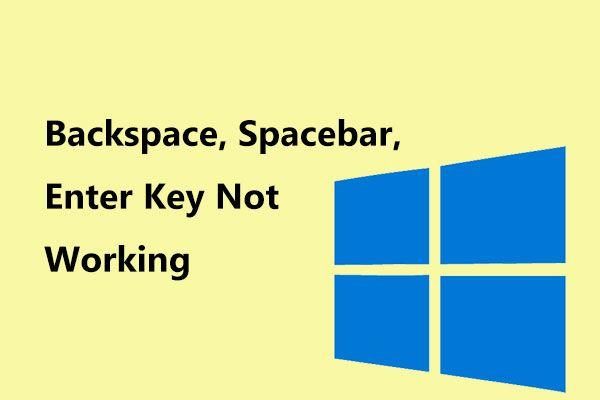 Retour arrière, barre d'espace, touche de saisie ne fonctionne pas? Réparez-le facilement! [Actualités MiniTool]