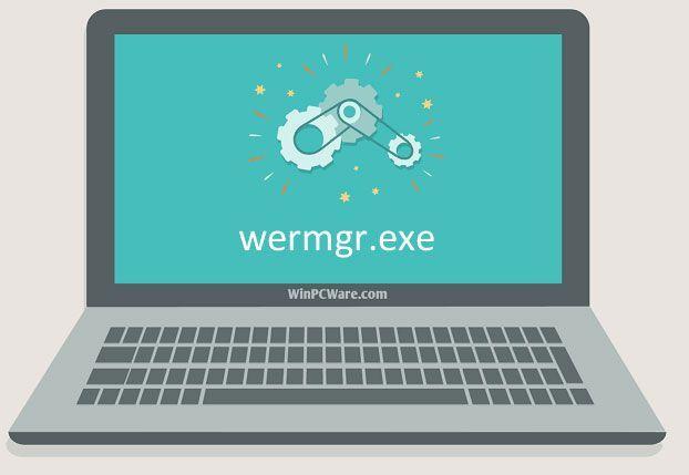 O que é o Wermgr.exe e como corrigi-lo? [Notícias MiniTool]
