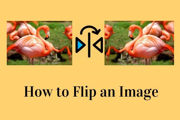 Kép megfordítása - 4 hasznos tipp
