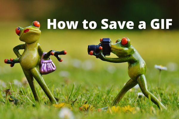 Cómo guardar un GIF de GIPHY / Twitter / Pixiv / Google
